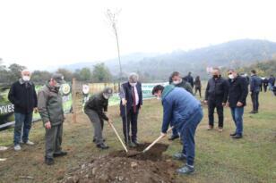Milli Ağaçlandırma Günü'nde Fidan Dikimi Yapıldı